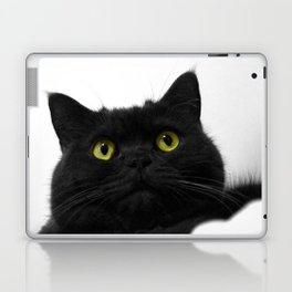 Muimui 3 Laptop & iPad Skin