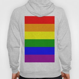 Rainbow Flag Hoody