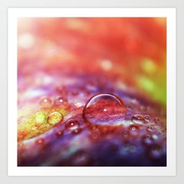 Colorful Apple Macro 1 Art Print