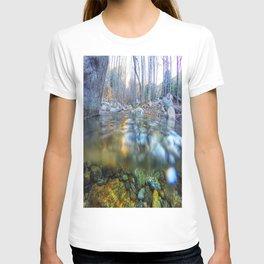 Etiwanda Falls T-shirt