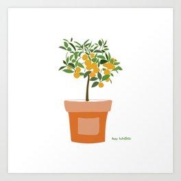 Orange tree in terracotta pot Art Print