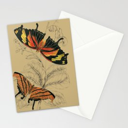 Scientific Antique Butterflies Entomology Drawing Stationery Cards