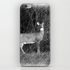 Stand Still, Look Pretty iPhone & iPod Skin