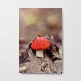 Red Cap Metal Print