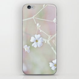 Pastel Wonderland iPhone Skin