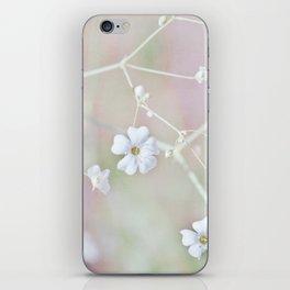 Pastel Wonderland iPhone Skin