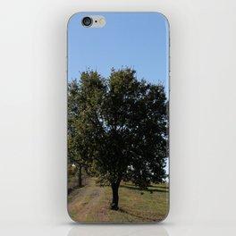 Tuscany Landscape iPhone Skin