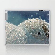 Polar freeze Laptop & iPad Skin
