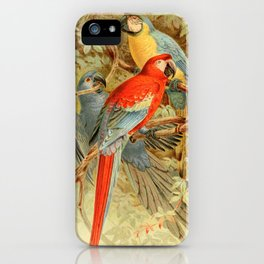Royal Natural History 1893-1896 - JCK (Macaws) iPhone Case