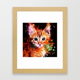 cat years wsstd Framed Art Print