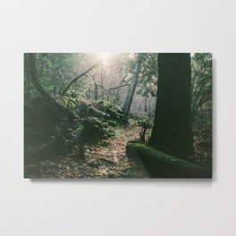 ORCAS ISLAND FOREST Metal Print