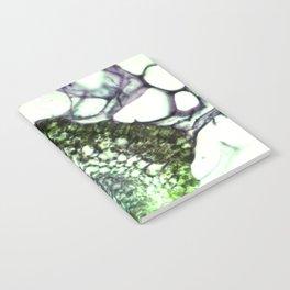 CAPSULE II Notebook