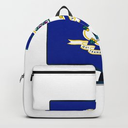 Connecticut Flag TV Backpack