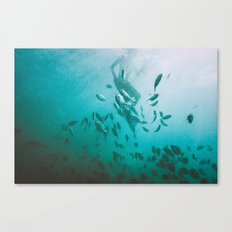 Dominican Canvas Print