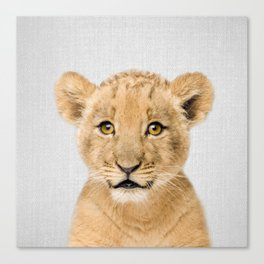 Baby Lion - Colorful Canvas Print
