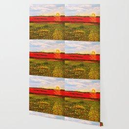 Poppy's At Sunset Wallpaper