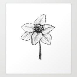 Daffy Daffodil Art Print