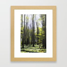 Ruegen-Forest Framed Art Print