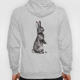 Woodland Creatures: Rabbit Hoody