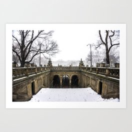 NYC Blizzard of 2015 in Central Park Art Print