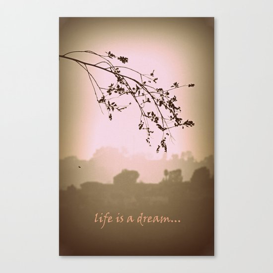 life is a dream Canvas Print