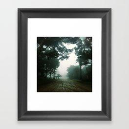 Print #16 Framed Art Print
