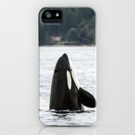 Whale  iPhone Case