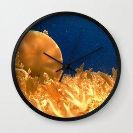 Sea Jellies Wall Clock