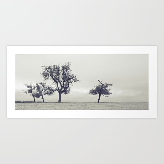bleak trees... Art Print
