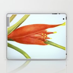 II. Vintage Flowers Botanical Print by Pierre-Joseph Redouté - Tropical Laptop & iPad Skin