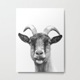 Black and White Goat Metal Print