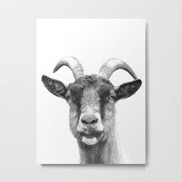 Black and White Goat Metal Print