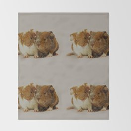 Guinea pigs Throw Blanket