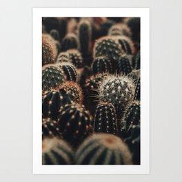 Cactus Mix Art Print