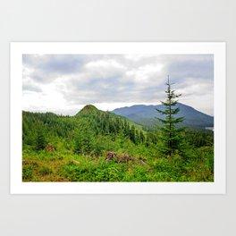 Alaskan Summer Art Print