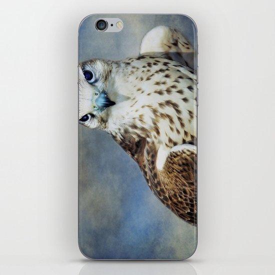 Saker Falcon iPhone & iPod Skin