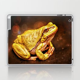 The InFocus Happy Frog Collection III Laptop & iPad Skin