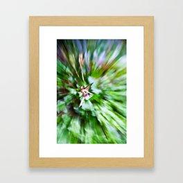 Faeries #2 Framed Art Print