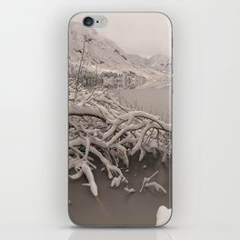 Frozen Lake Bohinj iPhone Skin