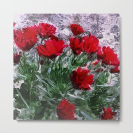 African Daisies Red With Wall Watercolor Metal Print