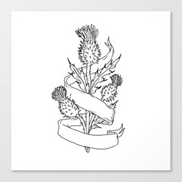 Scottish Thistle With Ribbon Drawing Black and White Canvas Print
