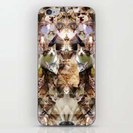 Cat Kaleidoscope iPhone Skin