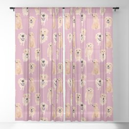 Golden Retrievers on Pink Sheer Curtain