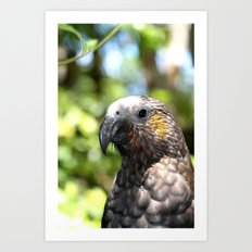 macro bird Art Print