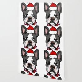 Boston Terrier Dog Christmas Hat Present Wallpaper