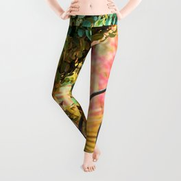 Azalea Gate 1 Leggings