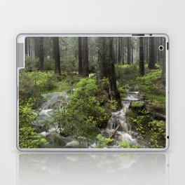 Mountains, forest, water. Laptop & iPad Skin