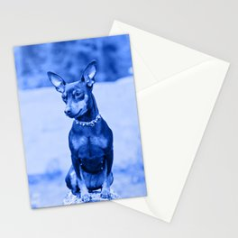 Outdoor portrait of a miniature pinscher dog. Blue toned. Stationery Cards