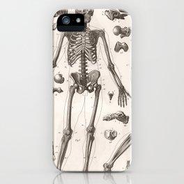 Anatomy  iPhone Case