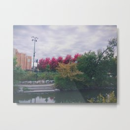 Fall in Chicago Metal Print